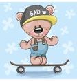 Bear with skateboard vector image