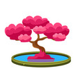 pink tree growing in pond bonsai miniature vector image