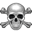 Skull and crossbones figure vector image