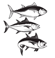 Set of tuna fish icons isolated on white vector image