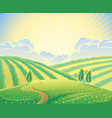 summer rural landscape with hills and road vector image