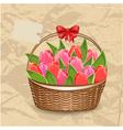 tulip5 vector image vector image