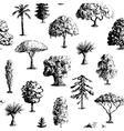 Hand drawn tree pattern vector image
