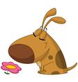 dog smelling flower vector image