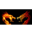 Two dragon heads vector image