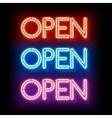 Neon word entry Open vector image