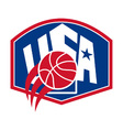 United States USA American Basketball Ball Shield vector image
