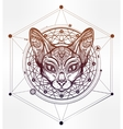 Vintage ornate cat head with tribal ornaments vector image