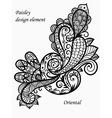 monochrome paisley vector image vector image