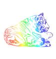 rainbow tiger vector image