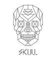 Skull abstract isolated on a white backgrounds vector image