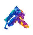 player hockey goalie vector image