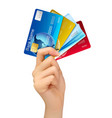 Hand holding credit cards vector image