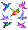 Set of isolated Humming birds vector image