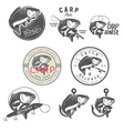 Set of vintage carp fishing design elements vector image