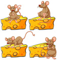 Four poses of mouse and cheese vector image