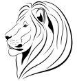 lion vector image