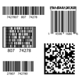 Product Barcode 2d Square Label vector image