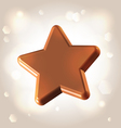 Chocolate star prize vector image vector image