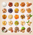 Colorful set of dried fruit and nuts vector image