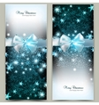 Elegant Christmas greeting cards with blue bows vector image vector image