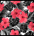 palm pattern black vector image