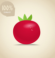 Cute red tomatoes vector image
