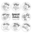 Spices and herbs labels Contour spicy set vector image