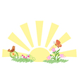 sunrise and summer nature vector image