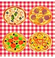 Set pizza on the italian table vector image