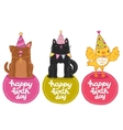 Happy Birthday labels with cat dog and bird vector image