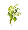 Lily Of The Valley Hand Drawn Realistic vector image