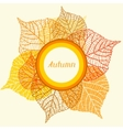 Background greeting card with stylized autumn vector image vector image
