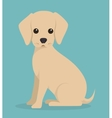 cute dog design vector image