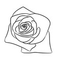 rose bud flower from the contour black lines on vector image