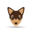 lovely head chihuahua puppy dog vector image