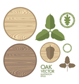 Oak Acorn Wood vector image