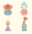 Set of flowers in vases vector image