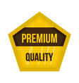 golden premium quality label icon flat style vector image
