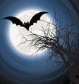 Halloween bat background vector image