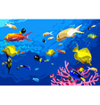 many colorful fish swim under water vector image