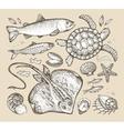 sea animals hand-drawn sketches fish trout vector image