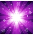 Purple color burst of light with snowflakes vector image