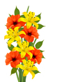 Background with colorful beautiful flowers vector image vector image