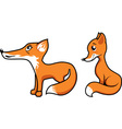 Foxes vector image