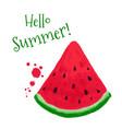 watermelon card vector image