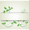 green leaves curls vector image