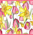 seamless season pattern with red tulips and yellow vector image