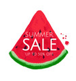 watermelon sale banner vector image
