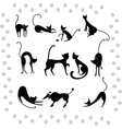 Collection of black cats vector image vector image
